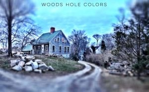 Woods Hole Colors